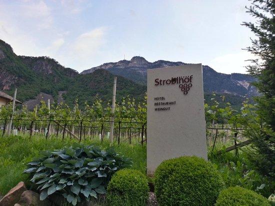 Weingut Stroblhof